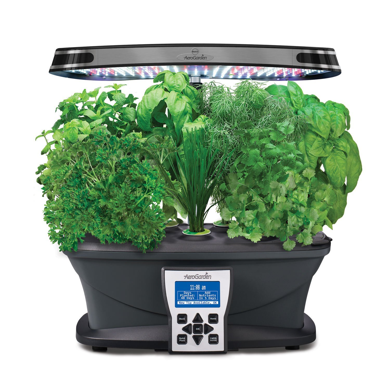 Grow A Herb Garden Indoors Grow herbs indoors workwithnaturefo