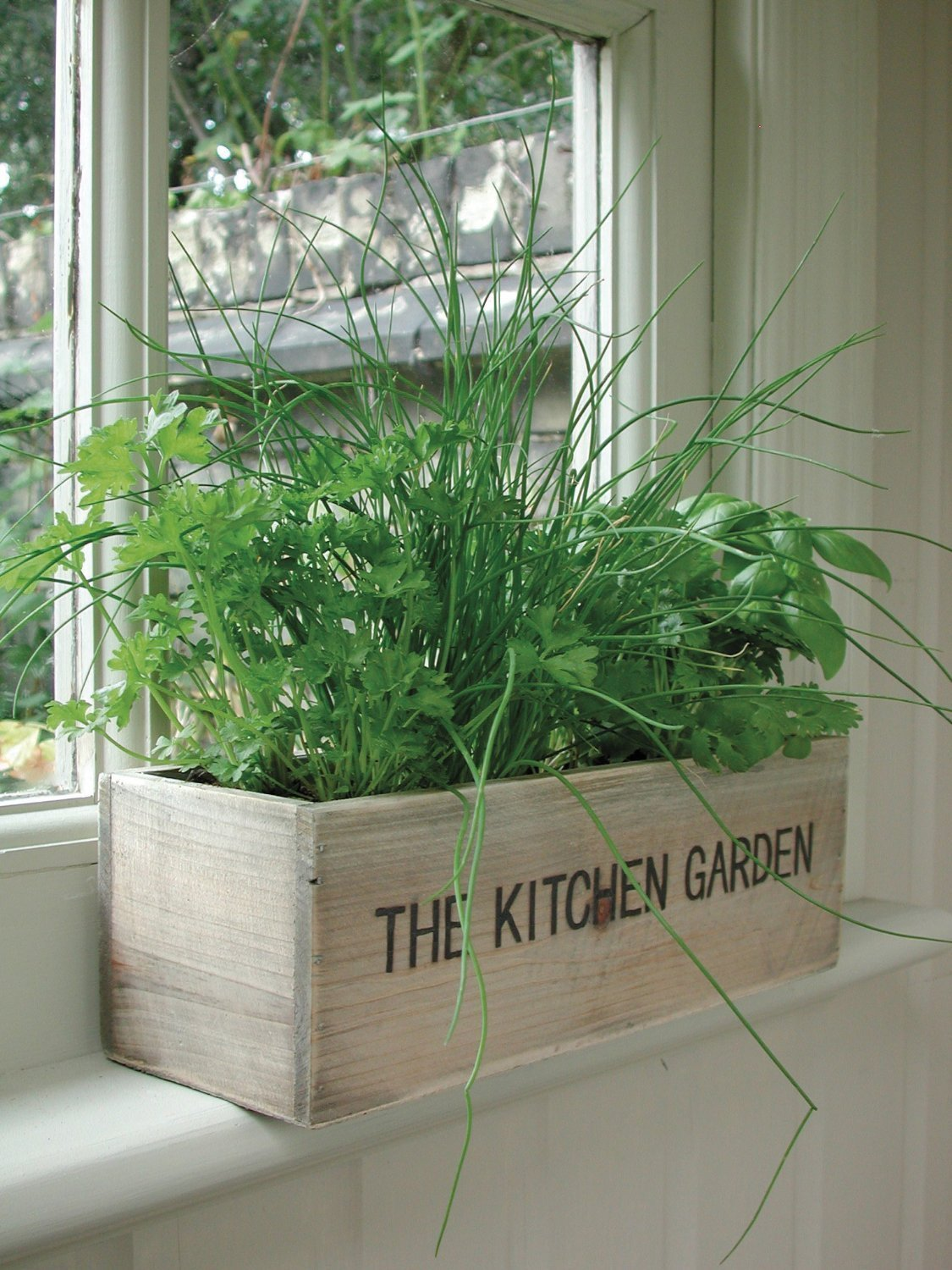 Kitchen Herb Garden Indoor Indoor Herb Gardens