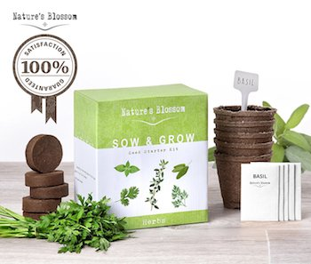 Organic Culinary Herb Grow Kit