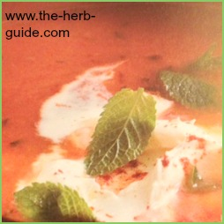 La Madeleine Tomato Soup