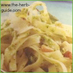 Mint Pesto Recipe