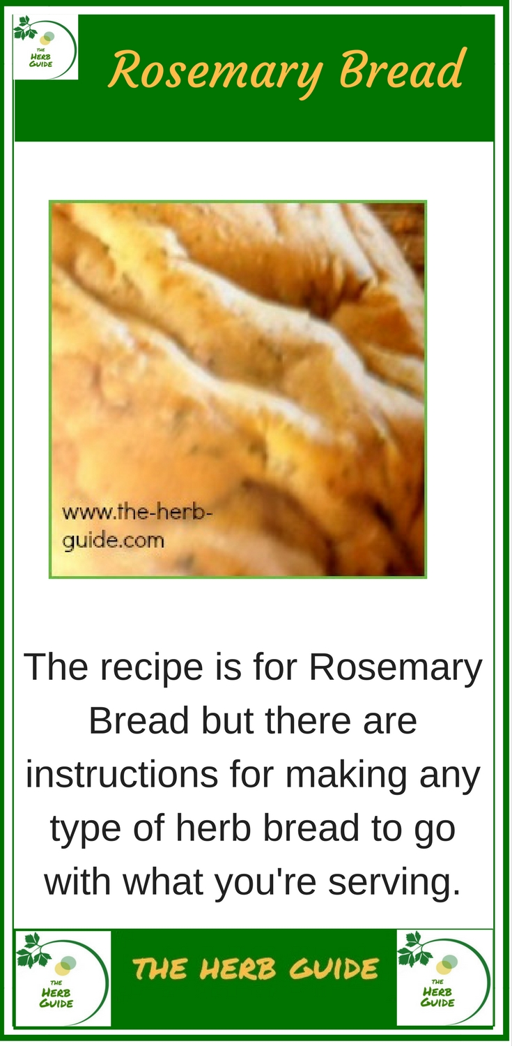 This Simple Rosemary Bread Recipe Gives Instructions For Making By Hand The Traditional Method As Well As Machine This Smells So Wonderful As It S Cooking