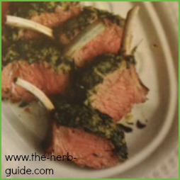 Lamb Rosemary Recipe