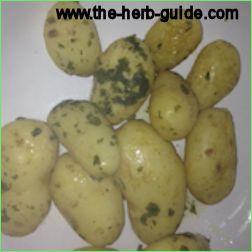 Minted New Potatoes