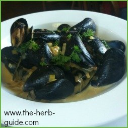 Mussels and Thyme Recipe